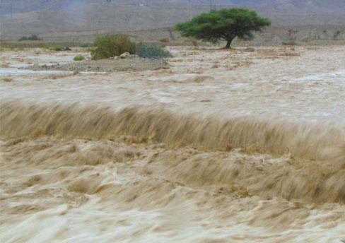 Akibat Banjir, Petani Rugi Puluhan Miliar