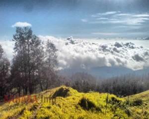 Pemandangan dari puncak Tambora