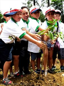 Kota Bima Akan Ditanami Sejuta Pohon