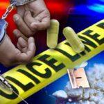 Polisi Tangkap Empat Warga Tengah Pesta Sabu