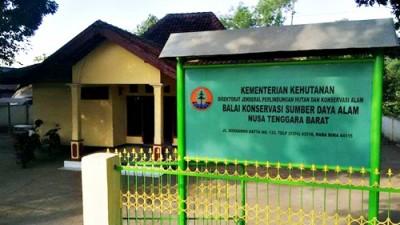 Kantor Konservasi Wilayah III Bima BKSDA NTB. Foto: Bin