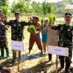 Bupati Bima Tanam Perdana Padi di Desa Rade