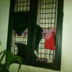 Rumah Dosen STKIP Bima Dilempari Orang Tak Dikenal