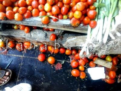 Tomat pedagang yang diinjak - injak. Foto: Deno