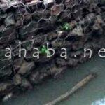 Proyek Pipanisasi di Kodo tidak Berfungsi