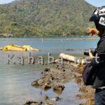 Excavator DKP yang Disewa Tenggelam di Pantai Amahami