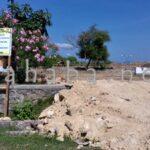 Taman Perbatasan Dibongkar, Sayang Uang Rakyat