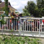 Diusir Pol PP, Pedagang Amahami Ngamuk dan Lempar Sayur di Pemkot Bima
