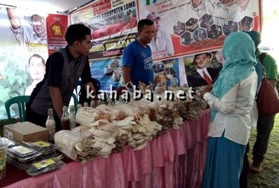 Salah satu stan pada acara Festival Tani Nusantara. Foto: Firman