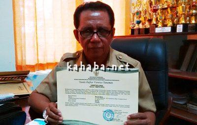 M. Tayeb menunjukan sertifikat hak paten Durian Parado. Foto: Noval