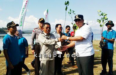 Penyerahan pohon mangrove dari Walikota Bima ke Direktur Pertamina Bima. Foto: Bin