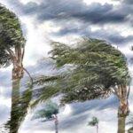 Angin Puting Beliung Terjang Kota Bima, Dua Rumah Rusak Parah