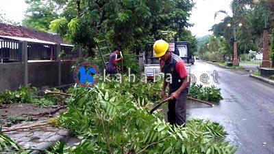Petugas PLN saat perambasan pohon dijalan Gatot Soebroto. Foto: Eric
