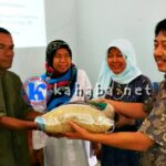 Kementan Segera Salurkan Bibit untuk 725 Lahan Pertanian