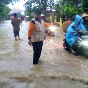 Dampak Banjir Kabupaten Bima, Ratusan Hektar Lahan Pertanian Rusak