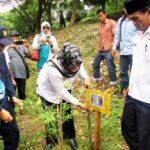 Bupati Bima Pimpin Aksi Tanam Pohon di Pela Parado