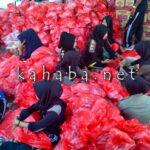 Pemkab Bima Salurkan 2.500 Paket Sembako untuk Korban Banjir