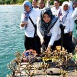 Selamatkan Teluk Waworada, Bupati Konservasi Terumbu Karang