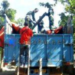 TNI Amankan Kayu Sonokeling Satu Truk Fuso