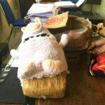 Pemilik 2 Kg Ganja Dalam Boneka Diciduk
