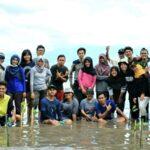 Peduli Kelestarian Laut, Mahasiswa KKN UGM Bersama DLH Tanam Mangrove