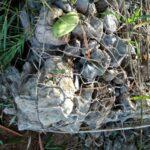 Pekerjaan Tidak Sesuai Spek, Proyek Pengendalian DAS dan Hutan Lindung di Wawo Disorot Warga