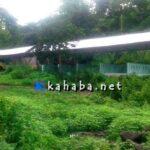 Lapak Milik Dinas Koperasi di Desa Pesa Ini Tidak Berguna