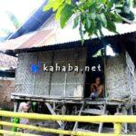 Ato Beko dan Istrinya Tinggal di Rumah Yang Nyaris Roboh
