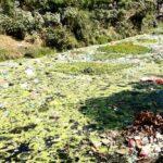 Pencemaran Sungai Padolo Masuk Tahap Mengkhawatirkan