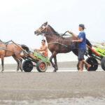 Ayo Ke Napa, Ada Gelaran Pacuan Kuda Pantai Se-Pulau Sumbawa