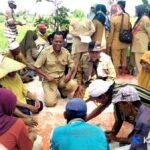 Sekolah Lapangan, Poktan Desa Darussalam Diajari Cara Tingkatkan Produktifitas Tanaman Padi