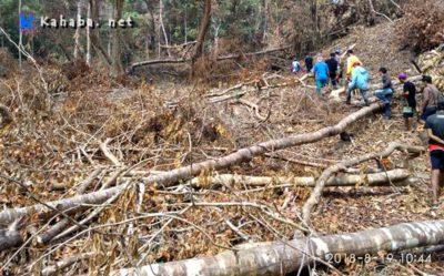 Hutan Gundul, Sekda Dompu Salahkan Masyarakat dan KLHK Provinsi