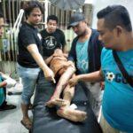 Maling Motor dan Lawan Polisi, Pemuda ini Ditembak