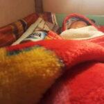 Tak Punya Uang, 6 Hari Bayi Ini Dibesarkan Dalam Kardus