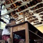 Infrastruktur Sekolah di Kabupaten Bima Rusak, 17 Ribu Siswa SD Terancam Bahaya