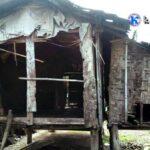 Kehidupan Ama Sao Menyayat Hati, Kakek di Jatibaru ini Tinggal di Gubuk Reot