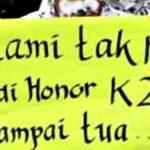Dewan ke Kementrian PAN-RB, Hasilnya Tak Ada Lagi Honorer K2