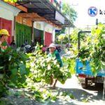 Ramadan, PLN Rutin Bersihkan Pohon Penyebab Listrik Padam