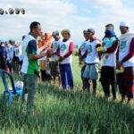 Ratusan Petani Bawang Hadiri Pasar Teknologi PT Advansia Indotani
