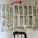 IRT Pemilik 2.390 Ribu Butir Tramadol Diamankan