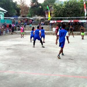 Sambut HUT RI ke-74, Karang Taruna Desa Palama Gelar Turnamen Bola Voli