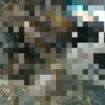 Jasad Seorang Nenek Ditemukan di Atas Gunung Ule