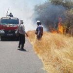 Lahan Sanggar Agro Terbakar