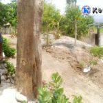 Wisata Edukasi, DLH Bangun RTH di DAM Rontu