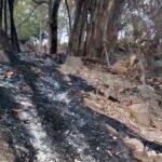Akibat Pembakaran Lahan, Pipa Air Bersih di Wawo Terbakar