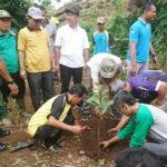 Karang Taruna Kecamatan Raba Penghijauan di Gunung Rite