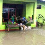 Diguyur Hujan Deras, Sebagian Wilayah Desa Cenggu Kebanjiran