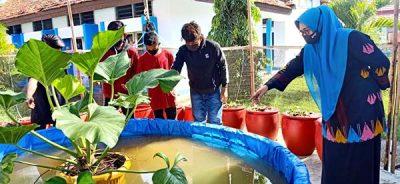 SMAN 4 Manfaatkan Lahan Sekolah untuk Budidaya Ikan Lele dan Kangkung
