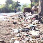 Jorok, Banyak Sampah Berserakan dan Berbau di Pinggir Jalan Desa Renda
