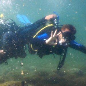 Keindahan Bawah Laut Teluk Bima, Banyak Binatang Makro Incaran Penyelam Dunia